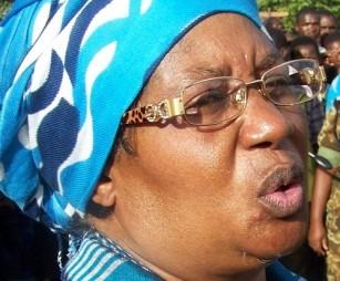 Vice President Joyce Banda: Party members revealed