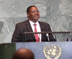 Mutharika: Candidacy under scrutiny